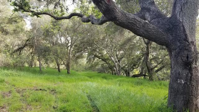 0 Pesante Road, Salinas CA: http://media.crmls.org/mediaz/BD3FD430-1A40-4E75-962A-E277A5A24D96.jpg