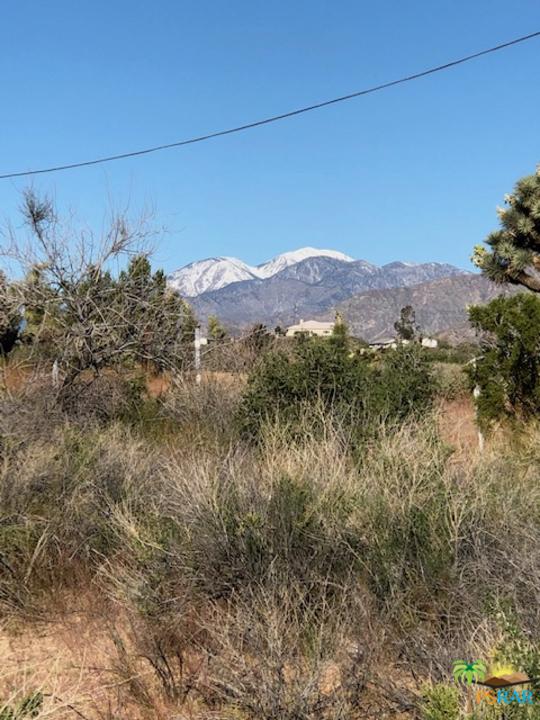0 Kickapoo Trail, Yucca Valley CA: http://media.crmls.org/mediaz/BF4BAC84-D399-4089-8AB3-462BDE8B0E0D.jpg