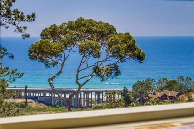 13330 Caminito Mar Villa, Del Mar CA: http://media.crmls.org/mediaz/BFD99B66-27CB-4EE0-BE96-FFDB5B0CB48C.jpg