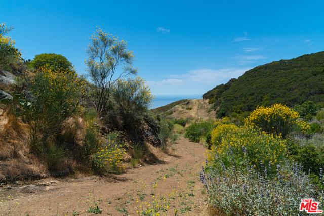 11100 Pacific View Road, Malibu CA: http://media.crmls.org/mediaz/C0C465CA-6F61-42ED-A948-A572ED8F9BFF.jpg