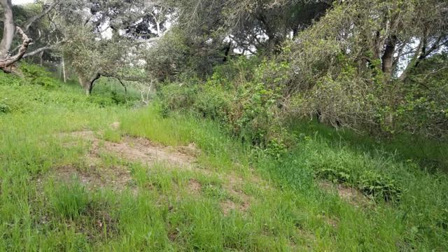 0 Pesante Road, Salinas CA: http://media.crmls.org/mediaz/C1A9E0B6-F8D1-4EAF-8E5C-134E2D9C6E94.jpg