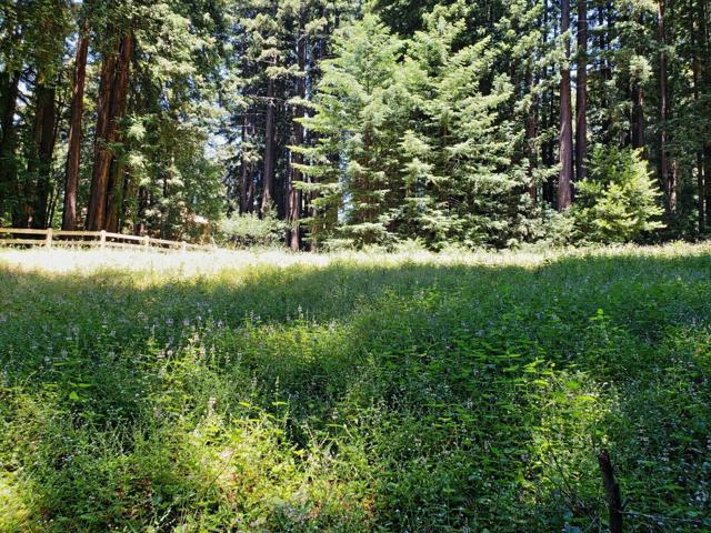 365 Henry Cowell Drive, Santa Cruz CA: http://media.crmls.org/mediaz/C1D9B121-6A87-4714-A09C-883EB7F715AD.jpg