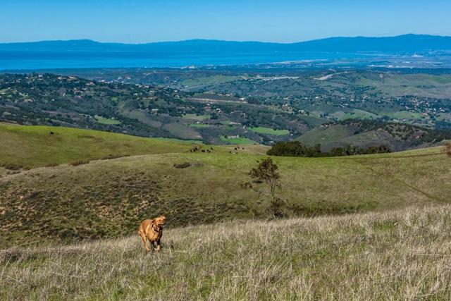 0 Country Club (Jack Rabbit Ranch), Carmel Valley CA: http://media.crmls.org/mediaz/C83F9BC8-32AB-490C-A5A4-D63E7DEBC114.jpg