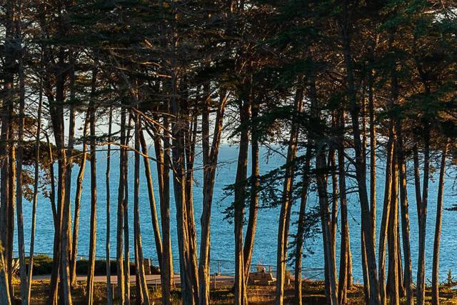 324 Seascape Resort Drive, Aptos CA: http://media.crmls.org/mediaz/CD5CF909-7996-4171-AE7F-D50353525967.jpg