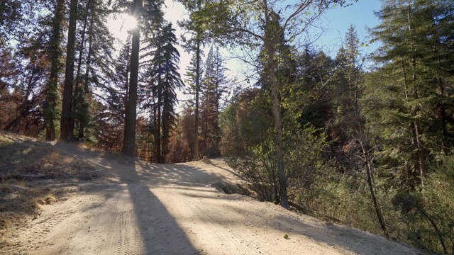 2014 Felton Quarry Road, Outside Area (Inside Ca) CA: http://media.crmls.org/mediaz/CD6F8558-925A-4D6F-984D-E1E8EB4C5D41.jpg