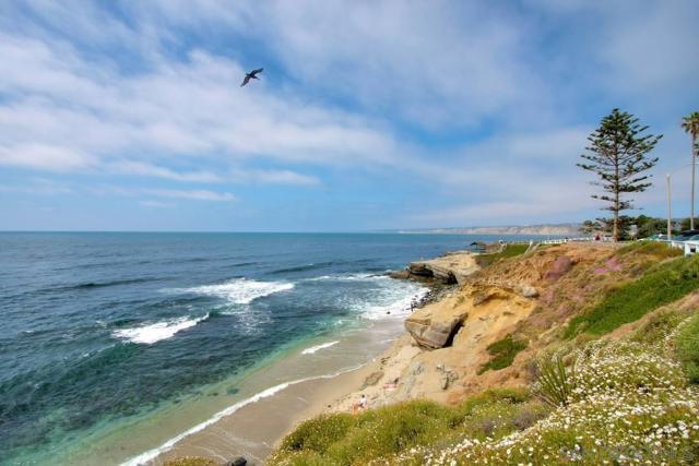 7811 Eads Avenue, La Jolla CA: http://media.crmls.org/mediaz/DE20121C-C5D9-444E-A534-BB2C5AF3B947.jpg