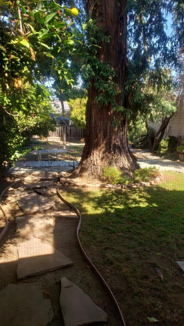 1015 Willow Glen Way, San Jose CA: http://media.crmls.org/mediaz/E156CF0E-2EBE-45C9-B675-85477ADEB3E7.jpg