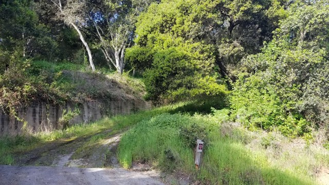 0 Pesante Road, Salinas CA: http://media.crmls.org/mediaz/E5237C77-AC2B-491A-8FCE-1F5F08007B20.jpg