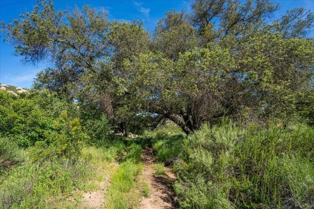 21 Ramona Trails, Ramona CA: http://media.crmls.org/mediaz/E70E8F57-D6CD-4112-BA32-E446262EB429.jpg