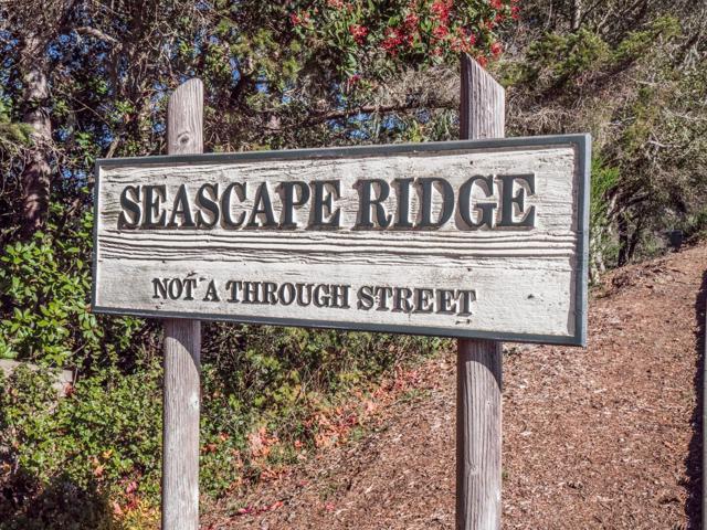 134 Seascape Ridge Drive, Aptos CA: http://media.crmls.org/mediaz/E870C189-6670-41E3-B048-0FF421166CA7.jpg