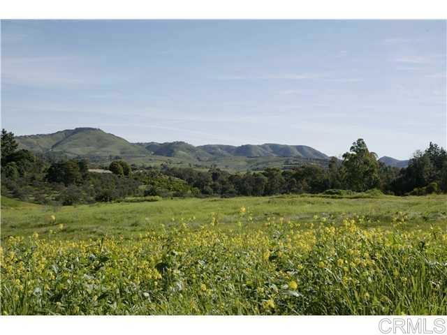 6710 El Montevideo, Rancho Santa Fe CA: http://media.crmls.org/mediaz/EA050B01-A58C-439F-966E-C3D970E69C56.jpg