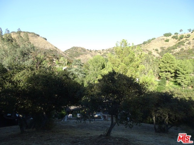 2365 Old Topanga Canyon Rd, Topanga, CA 90290 photo 15