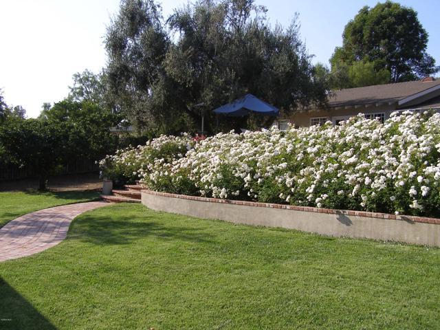144 La Patera Drive, Camarillo CA: http://media.crmls.org/mediaz/F82C8404-C2A2-4E3A-A456-64159228BC9E.jpg