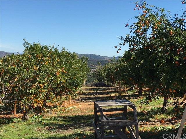 21130 Lillian Ln, Temecula, CA 92590 Photo 3