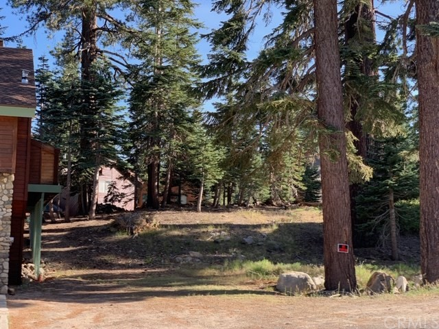 1593 Forest Trail, Mammoth Lakes, CA 93546