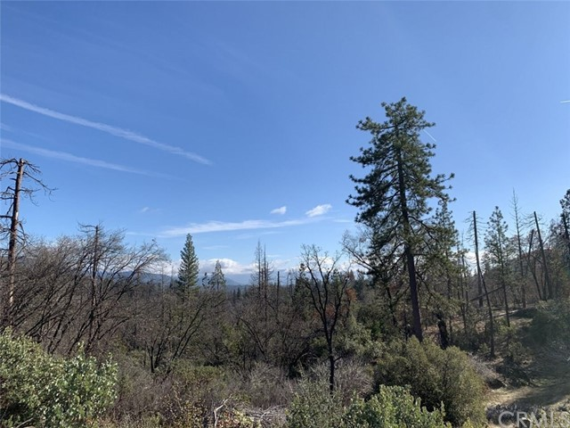 0 Road 223, North Fork, CA 93643 Photo 6