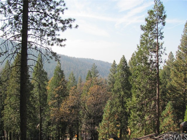7343 Yosemite Park Way, Yosemite, CA 95389