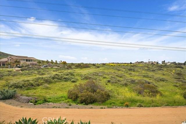 3423 Corte Panorama, Carlsbad, CA 92009 Photo 32