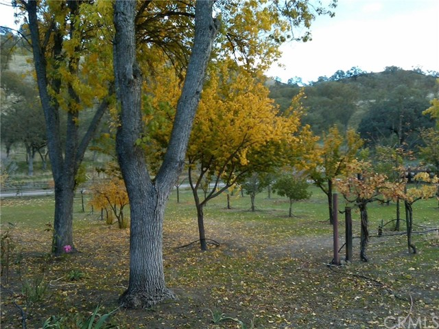3470 Ranchita Cyn Rd, San Miguel, CA 93451 Photo 22