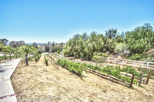 41540 Avenida Rancho, Temecula, CA 92592 Photo 59