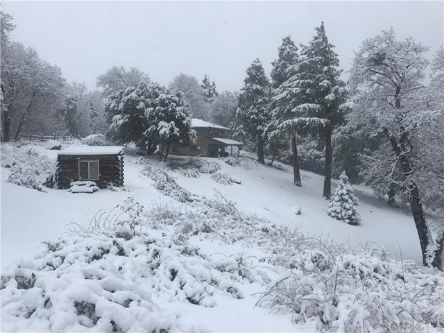 3. 33462 Conifer Rd Palomar Mountain, CA 92060
