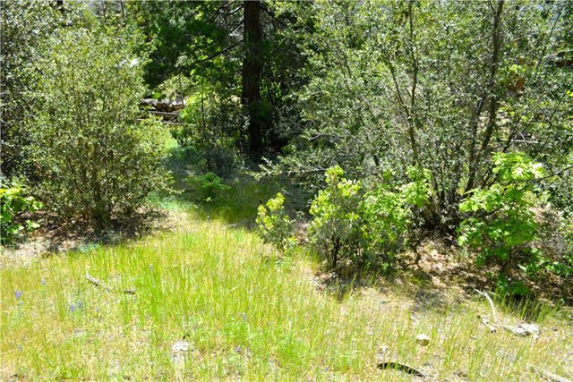 4 Granite Ridge, Bass Lake, CA 93604