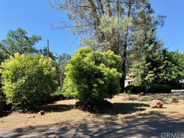 10142 Lucky Drive, Lower Lake, CA 95467 Photo 4