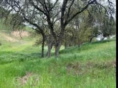4265 Nickel Creek Rd, San Miguel, CA 93451 Photo 32