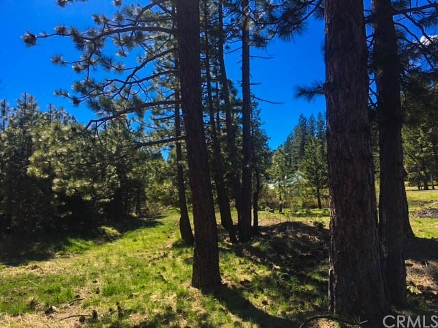 22 Lot 22&23 Scenic Drive, Mineral, CA 96063