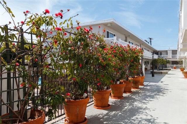 2411 Prospect Avenue 216, Hermosa Beach, California 90254, 2 Bedrooms Bedrooms, ,1 BathroomBathrooms,For Sale,Prospect,SB19068875