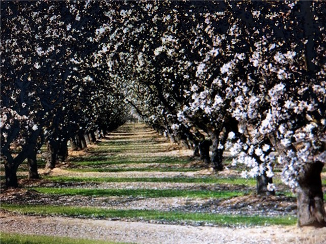 20489 Whitesbridge (180 Hwy) Avenue, Kerman, CA 93630