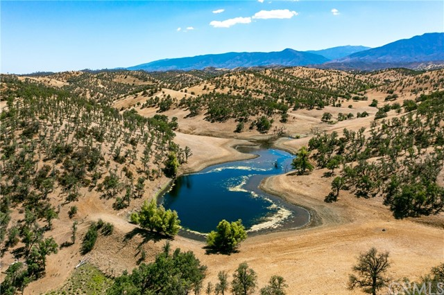 The 10,005.4 acre Hoff Ranch features oak grasslands and plentiful country for cattle grazing and recreational activities. The ranch sits at approximately 250-1500 foot elevation. It has varied terrain from the rolling hills covered in oak trees to the flat pasture lands. Hoff Ranch is located about 37 miles west of Red Bluff, CA, and approximately 154 miles from Sacramento, CA. The ranch is nicely water by ponds and a seasonal and blue line creek. Cattle are brought in early December and taken out on the first of June, running 550-700 cows for the season. This is high-value grazing land that could also serve as an outdoor getaway for hunting, fishing, horseback riding, and hiking activities. There is an off-grid manufactured home with a metal roof, barns, corrals, & solar. This is an excellent opportunity for a classic winter grazing ranch or a sportsman's retreat. In the Williamson Act. Hoff Ranch is contiguous with 4,194 +/- acre Hunter Ranch.The 10,005.4 acre Hoff Ranch features oak grasslands and plentiful country for cattle grazing and recreational activities. The ranch sits at approximately 250-1500 foot elevation. It has varied terrain from the rolling hills covered in oak trees to the flat pasture lands. Hoff Ranch is located about 37 miles west of Red Bluff, CA, and approximately 154 miles from Sacramento, CA. The ranch is nicely water by ponds and a seasonal and blue line creek. Cattle are brought in early December and taken out on the first of June, running 550-700 cows for the season. This is high-value grazing land that could also serve as an outdoor getaway for hunting, fishing, horseback riding, and hiking activities. There is an off-grid manufactured home with a metal roof, barns, corrals, & solar. This is an excellent opportunity for a classic winter grazing ranch or a sportsman's retreat. In the Williamson Act. Hoff Ranch is contiguous with 4,194 +/- acre Hunter Ranch.