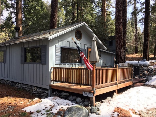 40335 Valley Of The Falls Drive, Forest Falls, CA 92339