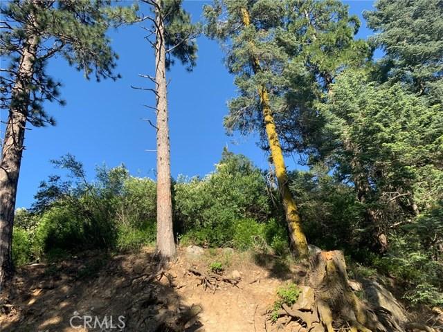 0 Sawpit Creek Road, Cedarpines Park, CA 92321