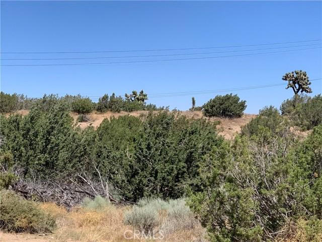 8590 Daisy St, Oak Hills, CA 92344 Photo 0