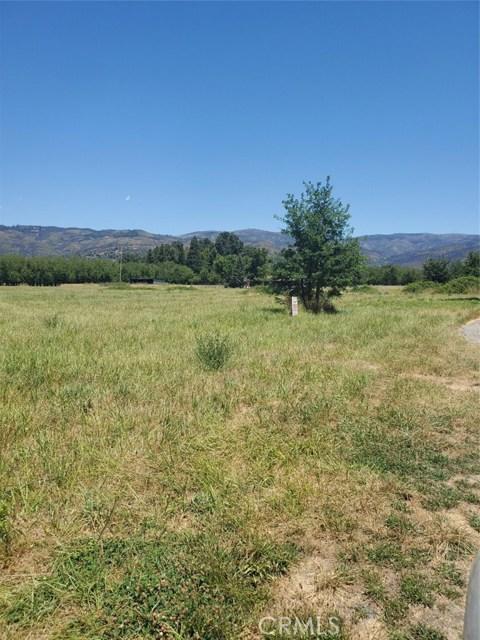 10025 Clover Court, Upper Lake, CA 95485