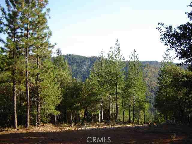 0 bunker hill, Yankee Hill, CA 95965