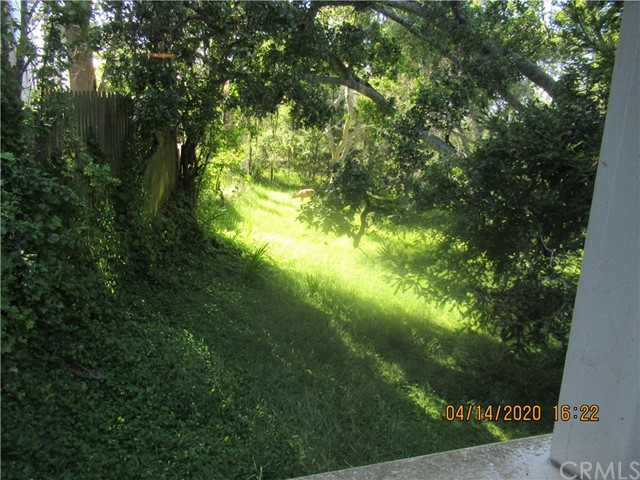 2525 Romney Dr, Cambria, CA 93428 Photo 39