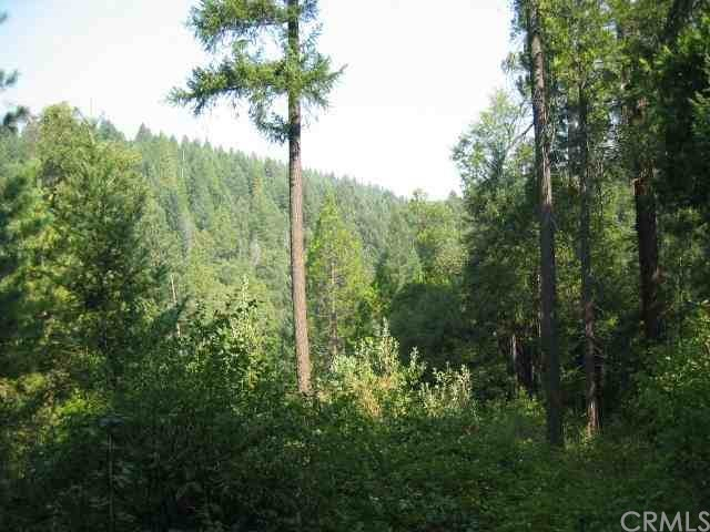 0 big ridge, Feather Falls, CA 95940