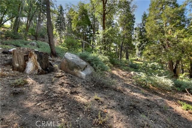 33785 Cedar Pines Ln, Green Valley Lake, CA 92341 Photo 22