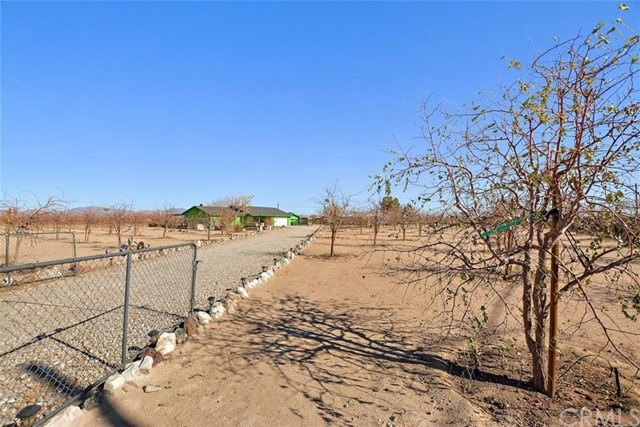 34738 Old Woman Springs Rd, Lucerne Valley, CA 92356 Photo 6