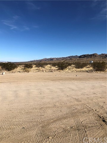 12 border, Joshua Tree, CA 92252