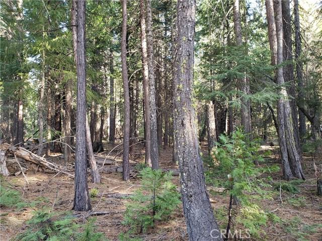 11 Biggers Glen Sub, Butte Meadows, CA 95942