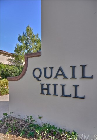 This Gorgeous Newly Renovated 2 Bedroom, 2 Bathroom Condo is located within Irvine's coveted Quail Hill neighborhood. Tree-lined streets and an ocean breeze welcome you to this spacious 1500+ SF home. New paint, new carpet, and new garage epoxy flooring just completed this week! Main level offers chef's kitchen with stainless steel appliances. Kitchen is open to spacious family room with a cozy fireplace. Formal dining area is perfect for hosting guests. Third level features master suite with large walk-in closet. Master bath is a spa-like retreat with his/her dual sinks and walk-in closet. Additional bedroom offers plenty of living space. Fresh designer paint and rich hardwood flooring throughout the home. Convenient two car garage provides direct access into home. Community offers resort-style amenities including 3 Olympic swimming pools, parks/playgrounds, sport courts, clubhouse, and gym room. Nearby hiking/biking trails for nature lovers. Take advantage of award-winning Irvine Unified School District. Nearby access to 405/133 Freeways and John Wayne airport. Walking distance to Quail Hill shopping center and minutes from Irvine Spectrum and Laguna Beach. Welcome home!