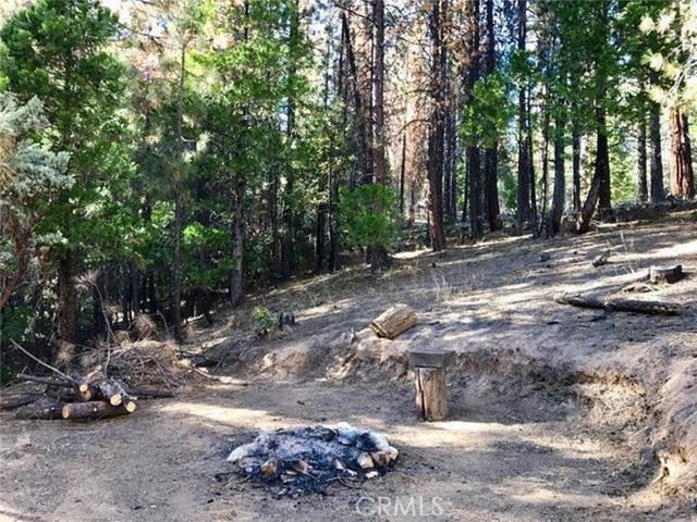 0 Pine Cone, North Fork, CA 93643 Photo 10