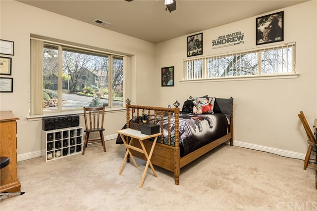 14931 Woodland Park Dr, Forest Ranch, CA 95942 Photo 20