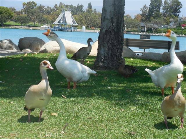 20 Woodleaf, Irvine, CA 92614 Photo 10