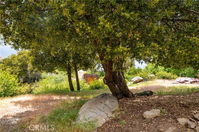 57. 33462 Conifer Rd Palomar Mountain, CA 92060