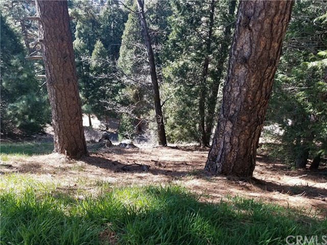 0 Vista Road, Cedarpines Park, CA 92322