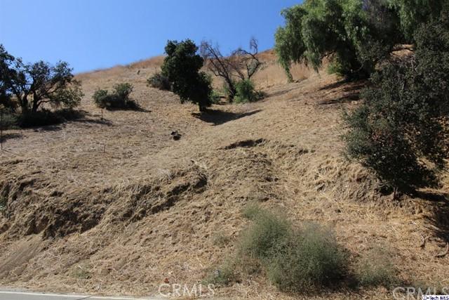 0 W Kagel Canyon St, Kagel Canyon, CA 91342 Photo 6